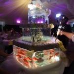 la torta finale